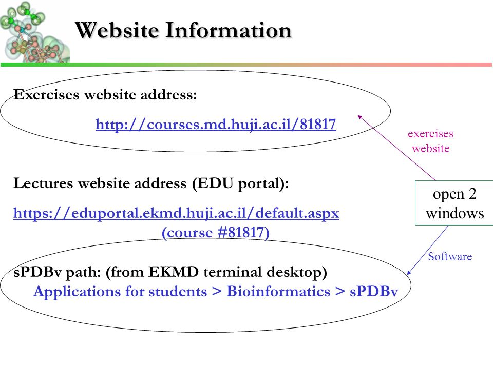 Website Information Exercises website address:   Lectures website address (EDU portal):   (course #81817) sPDBv path: (from EKMD terminal desktop) Applications for students > Bioinformatics > sPDBv open 2 windows Software exercises website